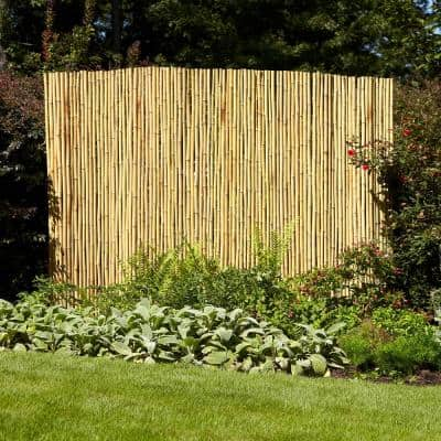 6 ft. x 8 ft. Natural Full Round Bamboo Fence