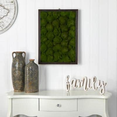 17 in. x 24 in. Artificial Moss Hanging Frame