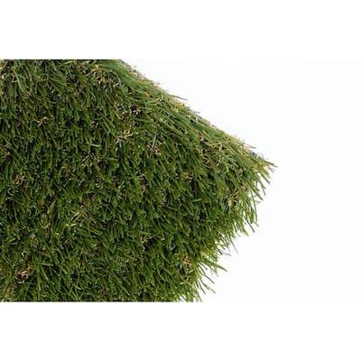 Bella 15 ft. Wide x Cut to Length Artificial Grass