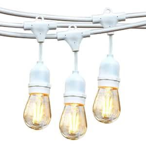Ambience Pro Outdoor 48 ft. L White Plug-in LED 2-Watt S14 Edison Bulb Hanging String Light 2700K