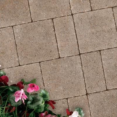 Vintage 8.86 in. L x 5.91 in. W x 2.36 in. H Silver Shell Concrete Paver