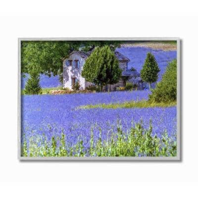 """11 in. x 14 in. """"Lavender Field House Landscape Photograph"""" by David Stern Framed Wall Art"""