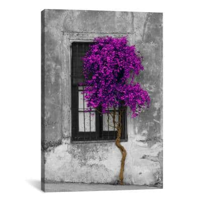 """""""Tree in Front of Window Purple Pop Color Pop"""" by Panoramic Images Canvas Wall Art"""