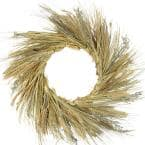 22 in. Unlit Autumn Harvest Wheat Grass and Grapevine Thanksgiving Fall Wreath