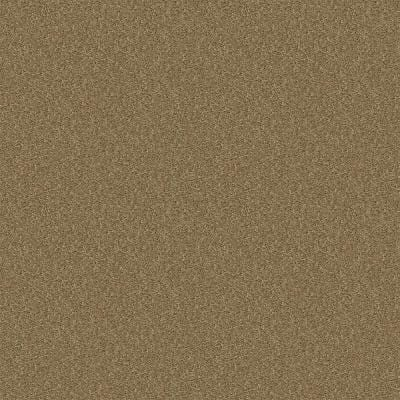 Alpine - Color Charity Texture 15 ft. Carpet
