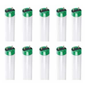 32-Watt 4 ft.Alto Linear T8 Fluorescent Tube Light Bulb, Cool White (4100K) (10-Pack)