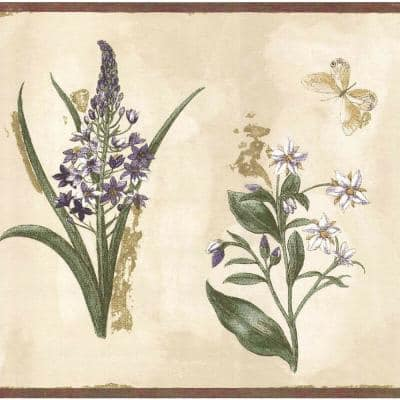 Falkirk Brin Flowers, Butterlies Yellow, White, Sage Green Wallpaper Border