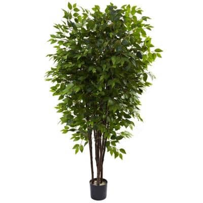 6.5 ft. Deluxe Ficus Tree