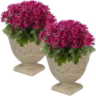 16 in. Beige Darcy Poly Flower Pot Planter (2-Pack)
