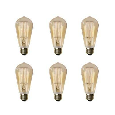 60-Watt ST19 Dimmable Incandescent Amber Glass Vintage Edison Light Bulb with Straight Filament Soft White (6-Pack)