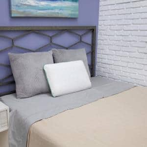 Fresh and Clean Classic Comfort Ultra-Fresh Antimicrobial Treated Fabric Standard Memory Foam Pillow