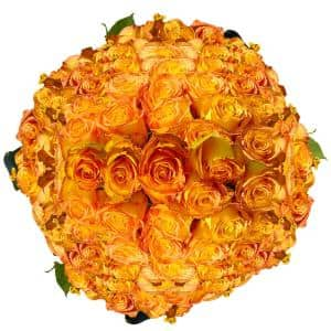 Yellow Roses with Orange Tips Kerio Roses- Fresh Flower Delivery (200 Stems)