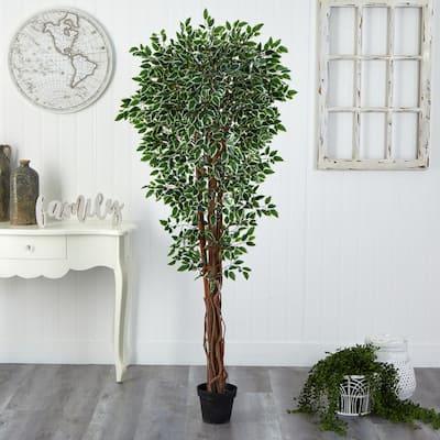 70 in. Artificial Variegated Ficus Tree UV Resistant (Indoor/Outdoor)