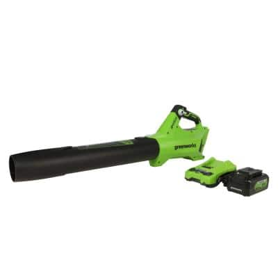 110 MPH 450 CFM 24-Volt Battery Cordless Handheld Axial Leaf Blower with 4.0 Ah USB Battery and Charger