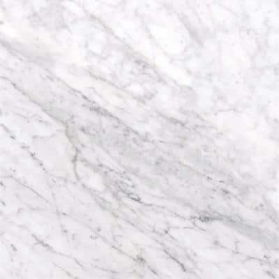 Carrara White 12 in. x 12 in. Polished Marble Floor and Wall Tile (10 sq. ft./case)