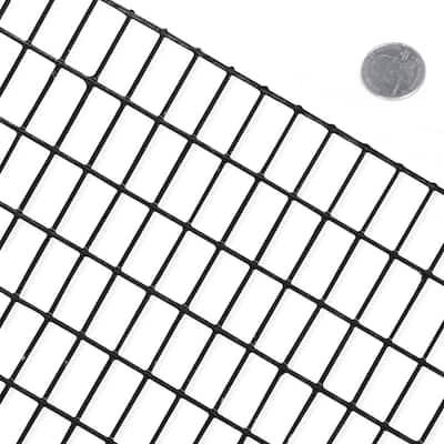 2 ft. x 100 ft. 16-Gauge Black PVC Coated Welded Wire Mesh Size 0.5 in. x 1 in.