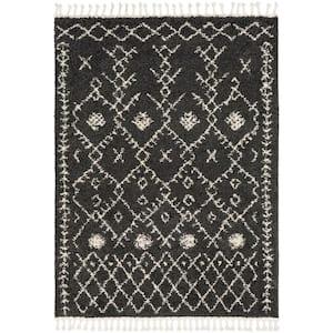 Farai Black 2 ft. x 3 ft. Geometric Area Rug