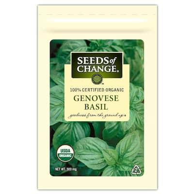 Genovese Basil Seed