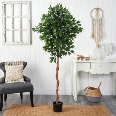 6 ft. Artificial Ficus Tree