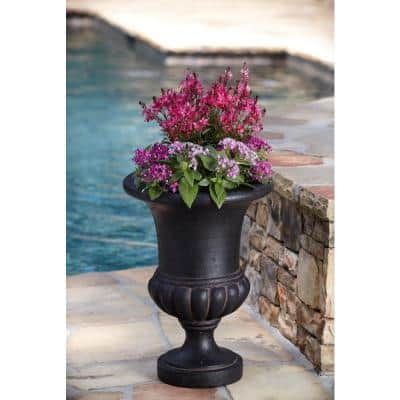 21 in. H in Aged Charcoal Cast Stone Bulbous Urn