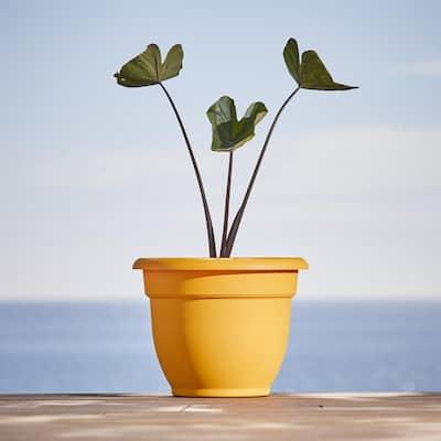 Ariana 13 in. Earthy Yellow Plastic Self-Watering Planter