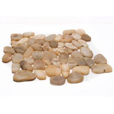 12 in. x 12 in. Yellow Sliced High-Polish Pebble Stone Floor and Wall Tile (5.0 sq. ft. / case)