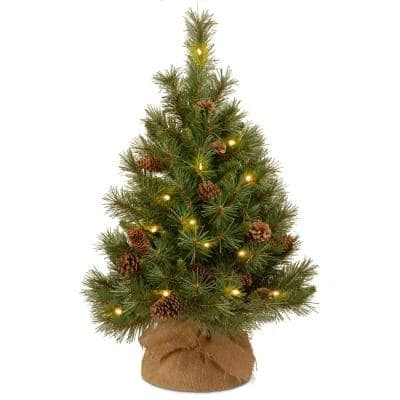 36 in. Pine Cone Tree with Battery Operated Warm White LED Lights