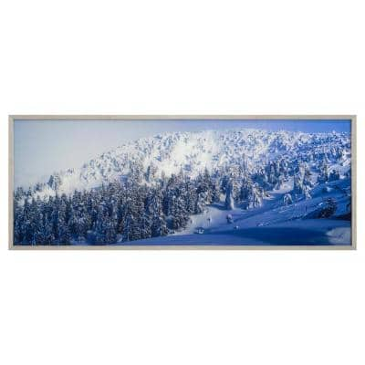 """""""Alpine Landscape"""" Silver Frame Photography Wall Art 23.6 in. x 63 in."""