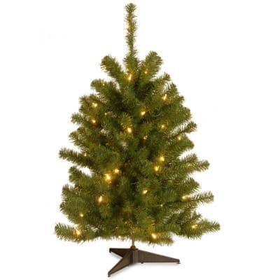 Eastern Spruce 3 ft. Artificial Christmas Tree with 50 Clear Lights