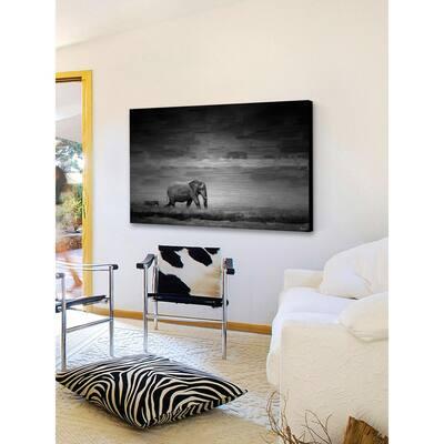 "30 in. H x 45 in. W ""Elephant"" by Parvez Taj Printed Brushed Aluminum Wall Art"