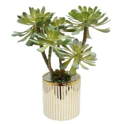 Green/White/Gold Striped Potted Succulent Stem in Plated Pot