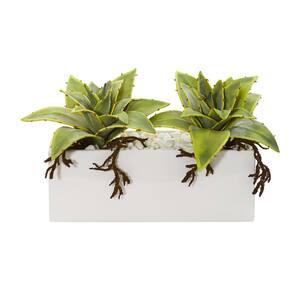 Indoor Succulent Artificial Plant in White Ceramic Vase