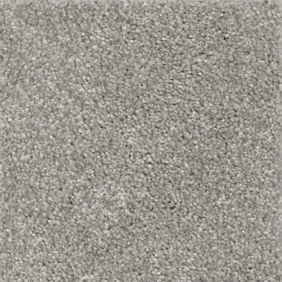 Nimble Creek - Color Pebble Texture 12 ft. Carpet