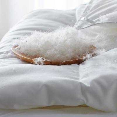 Company Conscious™ Medium Warmth White Duck Down Comforter