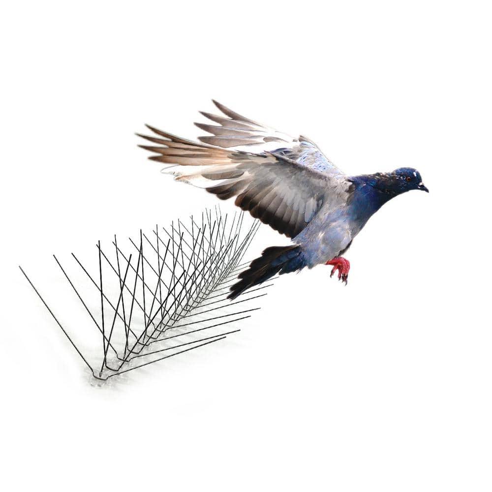 Bird Spikes Stainless Steel Pigeon Spikes Deterrent 4 PACK//10FT EACH