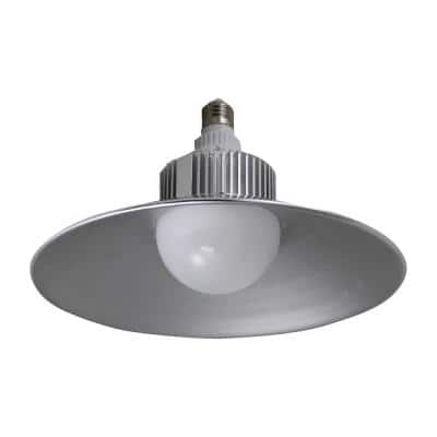 150-Watt Equivalent G25 2500-Lumen LED Utility Light Bulb Bright White