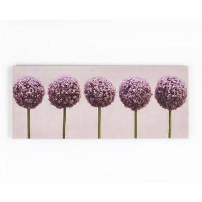 "39 in. x 16 in. ""Row Of Alliums"" by Graham and Brown Printed Canvas Wall Art"