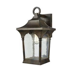 Loringdale 1-Light Hazelnut Bronze with Clear Seedy Glass Outdoor Wall Mount Lantern Sconce