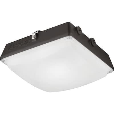 CNY 50-Watt Bronze Outdoor Integrated LED Canopy Area Light
