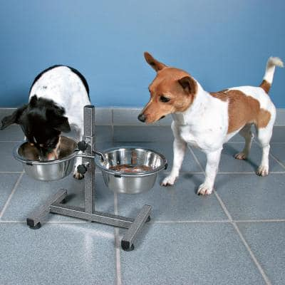 10.5 in. H Dog Bowls with Adjustable Stand 2 Stainless Steel Bowls