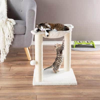 Cat Hammock and Scratching Post