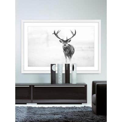 "30 in. H x 45 in. W ""Elk Stare"" by Marmont Hill Framed Printed Wall Art"