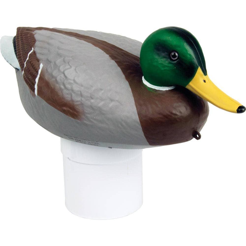 Poolmaster Clori Duck Mallard Swimming Pool And Spa Chlorine Dispenser 32130 The Home Depot