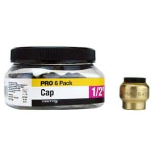 1/2 in. Brass Push-To-Connect Cap Pro Pack (6-Pack)
