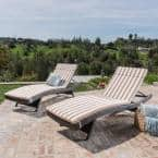 Salem Brown and White Stripe Deep Seating Outdoor Chaise Lounge Cushion (2-Pack)