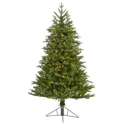 5 ft. Pre-lit Cambridge Fir Artificial Christmas Tree with 300 Clear Warm Multi-Function LED Lights