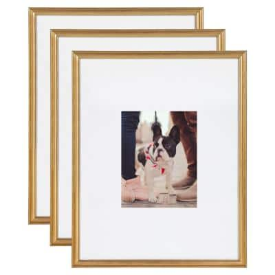 Adlynn 16 in. x 20 in. matted to 8 in. x10 in. Gold Picture Frames (Set of 3)