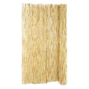 48 in. H x 8 ft. L Natural Peeled Reed Fencing