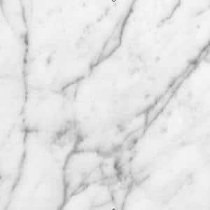 4 in. x 4 in. White Carrara Marble Sample