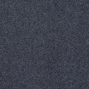 Seafront - Color Dark Blue 6 ft. Indoor/Outdoor Texture Marine Carpet